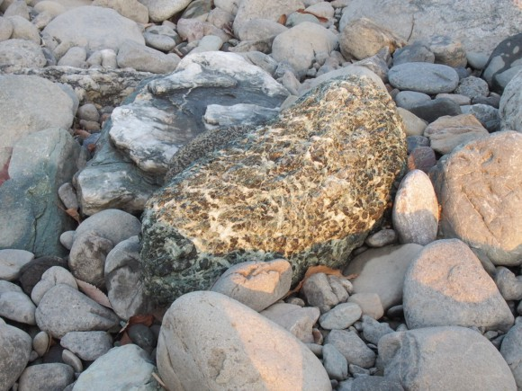 蛇灰岩写真